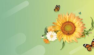 Hello<br>Spring