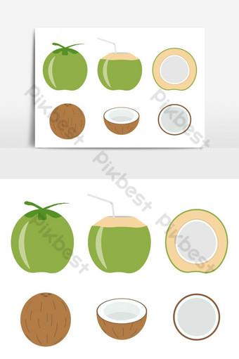Vector illustration of set fresh coconut isolated on white background PNG Images Template EPS
