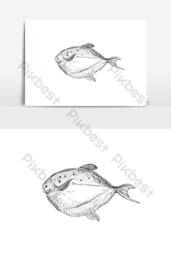 Hand drawn sketch style sea fish PNG Images Template PSD