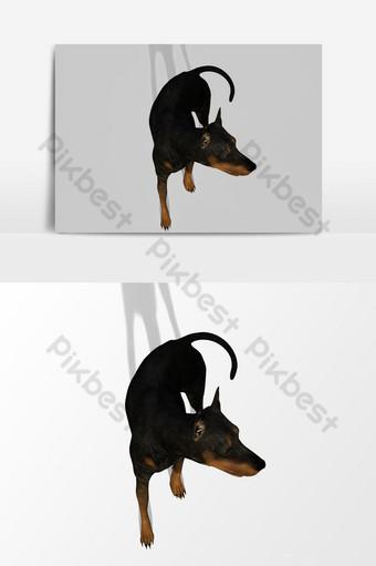 عرض ثلاثي الأبعاد للكلب يبحث حول عنصر الرسم المتجه صور PNG قالب PSD