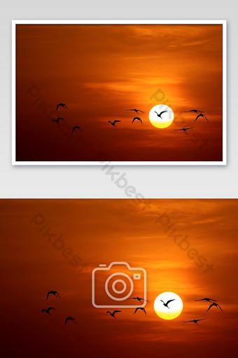 la luz dorada del sol y las nubes en el cielo y la sombra de un pájaro Fotografía Modelo JPG