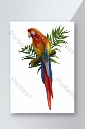 dibujado a mano botánico loro pájaro rojo naranja verde hoja fondo blanco Elementos graficos Modelo PSD