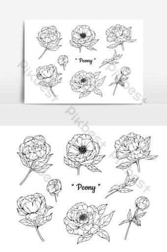 مجموعة من الفاوانيا زهرة الرسم التوضيحي صور PNG قالب AI