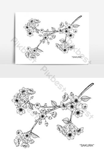 Gambar Lukisan Bunga Sakura Png Kartun Lukisan Vektor Free Download Pikbest