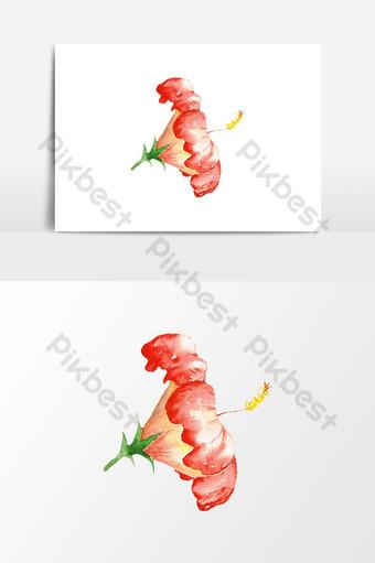 زهرة الكركديه المائية الجميلة صور PNG قالب PSD