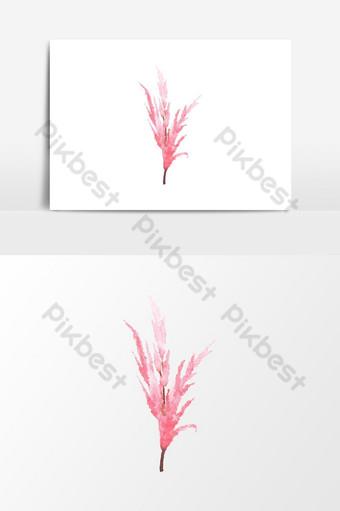 hermoso elemento de flor roja acuarela Elementos graficos Modelo PSD