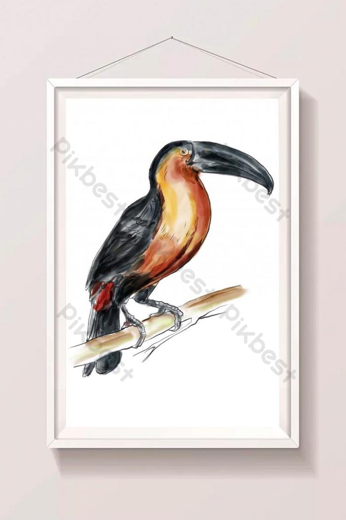 watercolor digital painting bird illustration