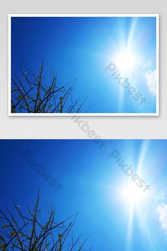 nubes azules cielo y árboles verdes fondo de llamarada de sol natural hermosa vista paisaje foto Fotografía Modelo JPG