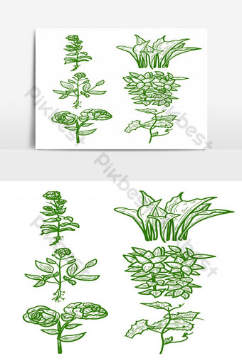 Set of hand drawn green colored flowers, grass isolated on white background PNG Images Template EPS