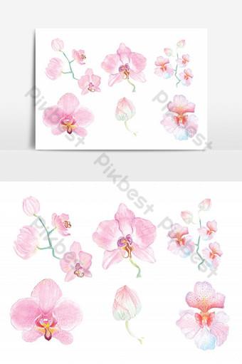 مجموعة من اللوحات المائية زهرة الأوركيد عنصر زهرة استوائية صور PNG قالب PSD