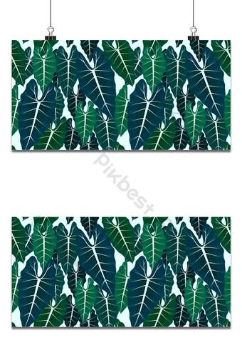 patrón sin costuras con hojas tropicales alocasia hoja patrón de vector transparente brillante Fondos Modelo EPS