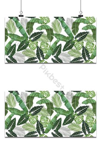 patrón sin costuras con hojas tropicales alocasia palmas monstera hojas de plátano selva Fondos Modelo EPS