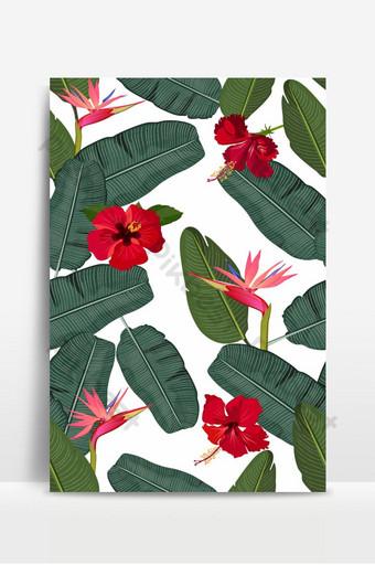 سلس نمط ناقلات أوراق الموز مع زهرة الكركديه الأحمر والطيور الوردي من الجنة خلفيات قالب EPS