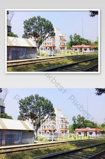الحدود الهندية في المنزل الزهرة الجميلة التصوير قالب JPG