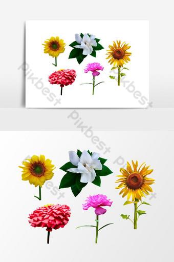 5 bunga transparan gambar png alam gratis Elemen Grafis Templat PNG