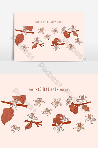 coffeeeea arabica plant. coffeeee fruits and flowers on a branches in the hand-drawn techni PNG Images Template EPS