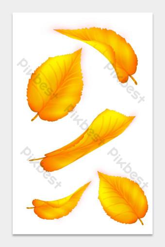 سقوط ورقة ناقلات مجموعة 2 الأصفر صور PNG قالب PSD