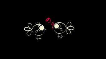 Cute cartoon line bird showing love confession sending flower animation Video Template AEP
