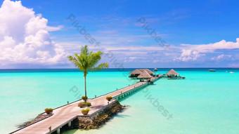 1080P real shot of Maldives seaside trestle bridge scenery Video Template AEP