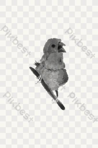 Gambar Kandang Burung Dara Sederhana - Kandang 1