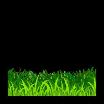 녹색 클립 아트 잔디 요소입니다 일러스트 템플릿 PSD
