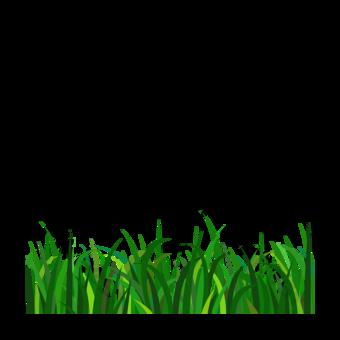 녹색 잔디 클립 아트 요소 일러스트 템플릿 PSD