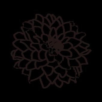 흑인과 백인 라인 대부분의 국화 꽃 클립 아트 흑백 일러스트 템플릿 AI