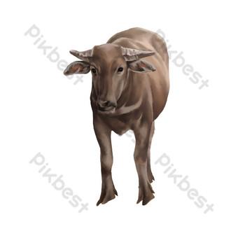 buffalo lukisan kerbau realistis merumput kerbau Elemen Grafis Templat PSD