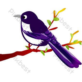 Gambar Burung Murai Template Psd Png Vektor Download Gratis Pikbest