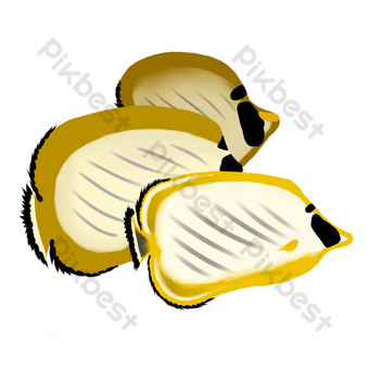 Delicious seafood oysters PNG Images Template PSD