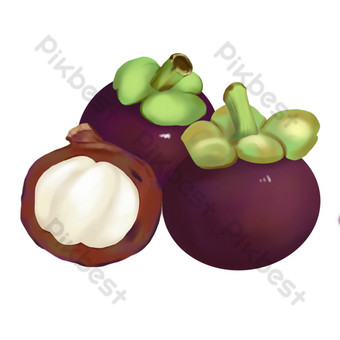 Food fruit mangosteen hand drawn PNG Images Template PSD