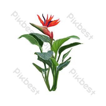свежие листья растений свободный вырез Графические элементы шаблон PSD