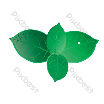 зеленый лист растения свободный вырез Графические элементы шаблон AI