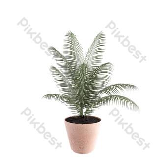 النباتات الخضراء بوعاء تزيين المنزل الداخلية صور PNG قالب PSD