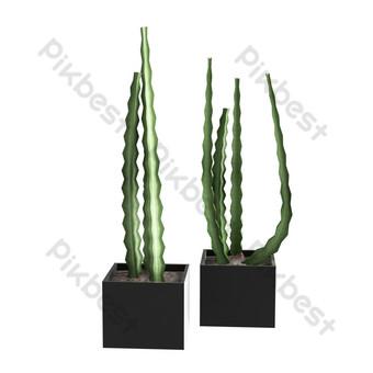 نباتات خضراء ديكور المنزل الداخلي صور PNG قالب PSD