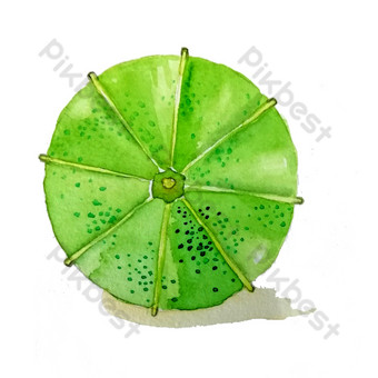 Parapluie en papier huilé Parapluie pliant Herbe verte Parapluie pliant de style chinois vert PNG Éléments graphiques Modèle PSD