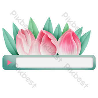 Pink tulip search box PNG Images Template PSD