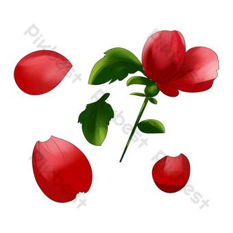 patrón decorativo pintado a mano de flor rosa roja Elementos graficos Modelo PSD