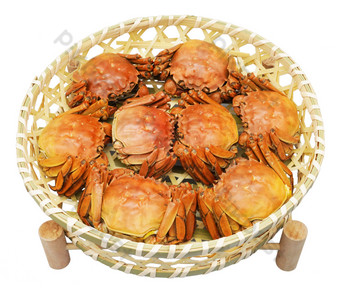Sea crab cooked crab PNG Images Template RAW