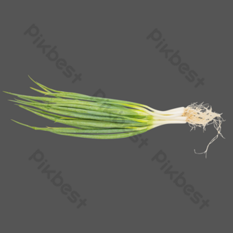 Seasoning vegetables shallots PNG Images Template RAW