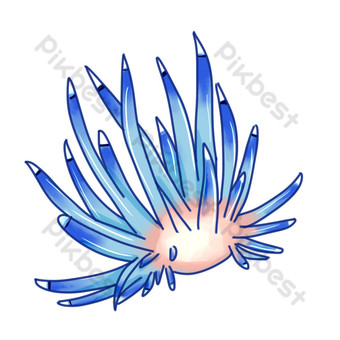 Water creature blue sea urchin PNG Images Template PSD