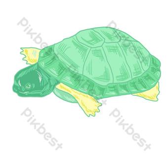 tortuga marina animal acuarela Elementos graficos Modelo PSD