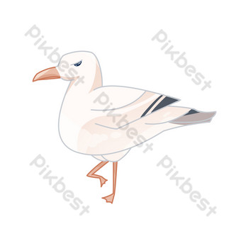 White seagull flying bird standing PNG Images Template PSD