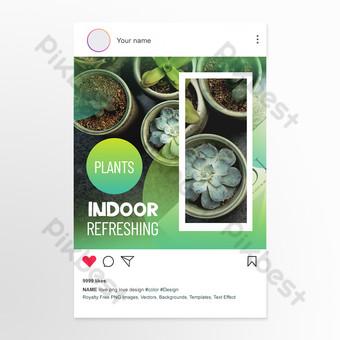 بسيطة وجديدة الديكور الداخلي نمط الزهور الخضراء والنباتات منشورات وسائل التواصل الاجتماعي قالب PSD
